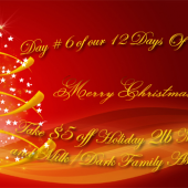 Day # 6 Of Our 12 Days Of Christmas