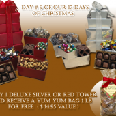 Day #9 Of Our 12 Days Of Christmas