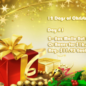 Day #1 of 12 Days of Christmas